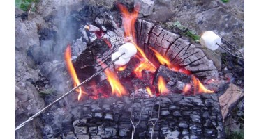 5 Self Feeding Campfires