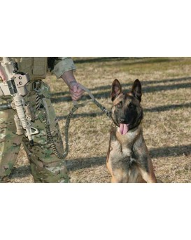 Tactical Police K9 Dog Training Leash